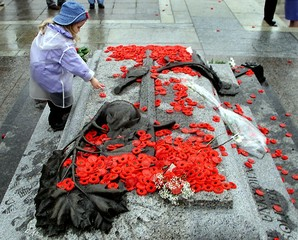 Danielle Provost lays a poppy on the Tomb of the Unknown Soldier during Remembrance Day ceremonies i..
