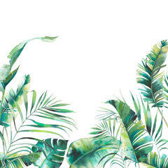 Watercolor summer floral frame. Hand drawn card design with exotic leaves and branches isolated on white background. Palm tree, banana leaves, mostera plants