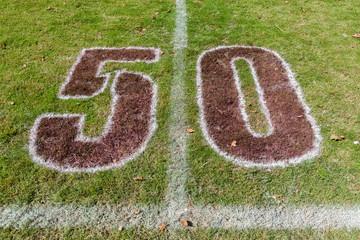 Rugby Field Chalk Markings