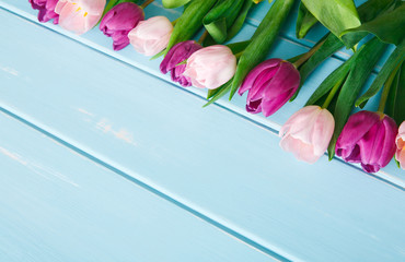 Pink tulips on blue wood background, copy space