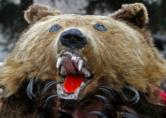 A man dressed in a bear costume takes part in the Lole Carnival