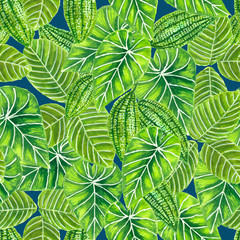 Tropical seamless pattern made of various leaves. Element for design.