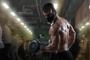 Muscular bodybuilder working out in gym Wall mural