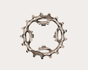 Bicycle cog on white background