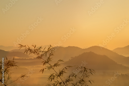 Sunrise And The Mist With Yellow Flowers Foreground In