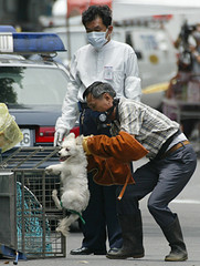 AN ANIMAL CONTROL OFFICER STRUGGLES WITH A DOG IN TAIPEI.
