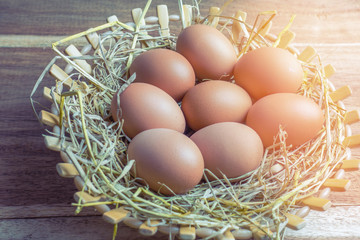 eggs in the basket  with sun light in morning