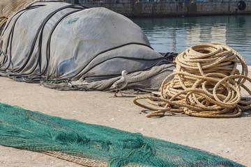 Gaviota junto a red de pesca