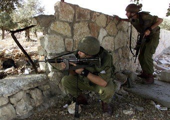Israeli soldiers look for Palestinian snipers in an olive grove near a checkpoint in the West Bank t..