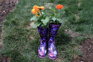 A pair of boots is planted with flowers on a floating barge, which is planted with fruit trees, as part of the Swale project called a collaborative floating forest, in the East River in the Brooklyn borough of New York