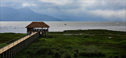 Lake Yojoa, National park in Honduras, Central America, vacation trip, cows and green trees