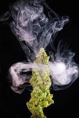 Macro detail of single cannabis bud (green crack marijuana strain)