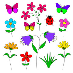 Set of  flowers, herbs,   butterfly,  ladybug