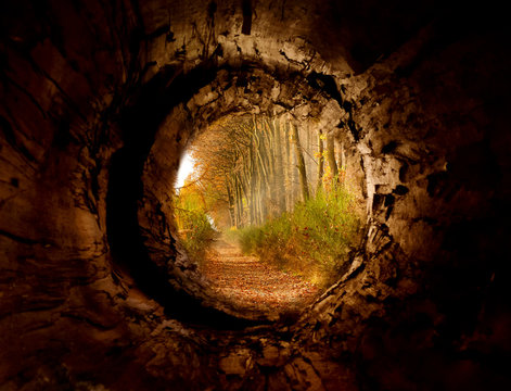 Secret tunnel to the magicforest pathway