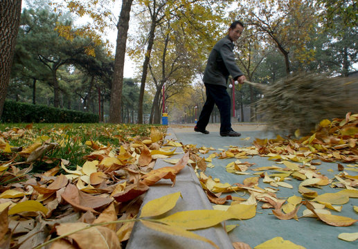 A street sweeper brushes fallen leaves off a road in Beijing as Winter draws near, October 17, 2002...
