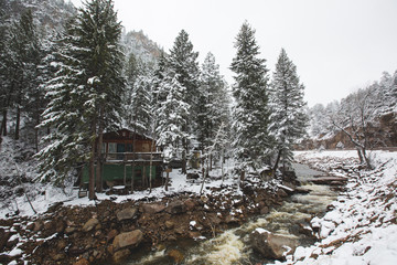 View of forest covered in snow with flowing river during winter