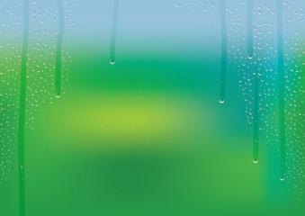 結露 水滴 新緑