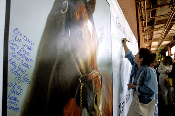 Racing fans sign a giant get-well card for Kentucky Derby winner Barbaro in Elmont