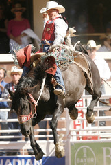 Cody Wright rides the horse Star Burst to win $100,000 dollars in the Saddle Bronc event at the Calgary Stampede Rodeo in Calgary.