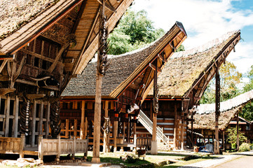 Foto op Canvas Indonesië Tongkonan houses with horns of buffaloes and wood carving and paintings, traditional torajan buildings. Ethnic village Kete Kesu in Tana Toraja, Rantepao, Sulawesi, Indonesia. Wide angle