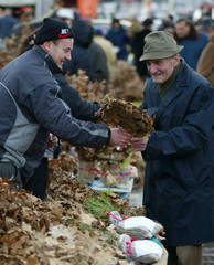 A street vendor offers dried oak branches for sale the Yule log symbol for the Orthodox Christmas eve, in Belgrade