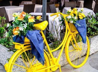 old bike with flowers