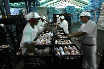 Workers prepare milk products in the recently nationalized milk plant Los Andes in Barquisimeto