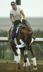 Breeders Cup horse Funny Cide works out at Lone Star Park in Texas.