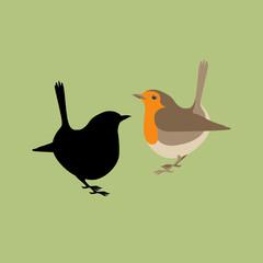 robin vector illustration style Flat