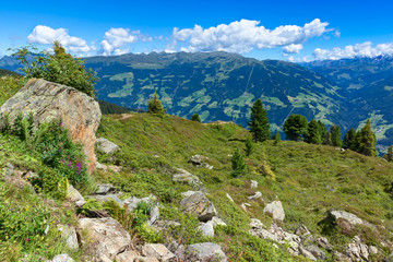 Wall Mural - Summer mountain view with green meadow and stones in the foreground. Austria, Tirol, Zillertal, Zillertal High Alpine Road
