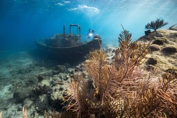 Unterwasser - Riff - Wrack - Tugboat - Schwamm - Taucher - Tauchen - Curacao - Karibik