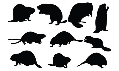 Beaver Silhouette vector illustration