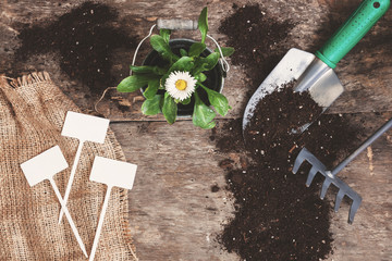 Garden tool, shovel, rake, watering can, bucket, tablets for pla
