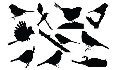 Chickadee Silhouette vector illustration