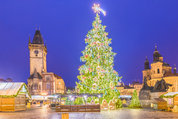 Wall Mural - Christmas tree and fairy tale Church of our Lady Tyn in Prague, Czech Republic.