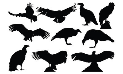 Condor Silhouette vector illustration