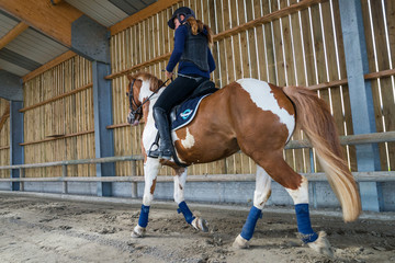 travailler le trot