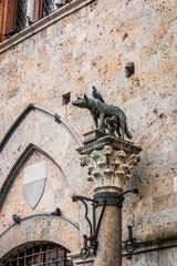 Colonne et statue de Romulus et Rémus à Sienne en Toscane