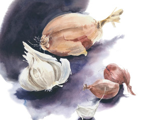 Onions and garlic clove still life watercolor painting illustration isolated on white background