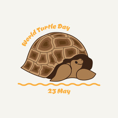 World turtle day.