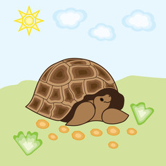 Illustration of a turtle on a background of grass and sky.