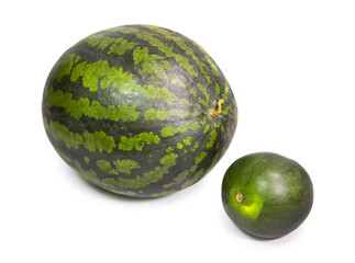 two water melons on a white background, big and small, dwarfish  version..