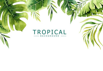 Hand drawn watercolor tropical plants background. Exotic palm leaves, jungle tree, brazil tropic borany elements. Perfect for fabric design. Aloha art. Wall mural