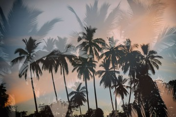 Idyllic tropical sunset with palm trees silhouettes