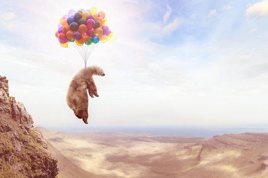 Ein Bär hängt an Luftballons