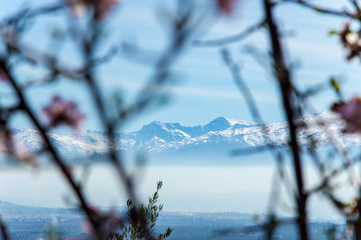 Idyllic view of Sierra Nevada during springtime, Andalusia, Spain