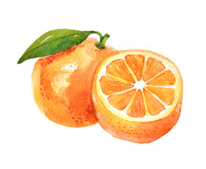 Orange fruit with leaf, watercolor illustration