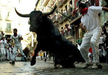 A bull slips and slides into a curve during the seventh running of the bulls at the San Fermin festi..