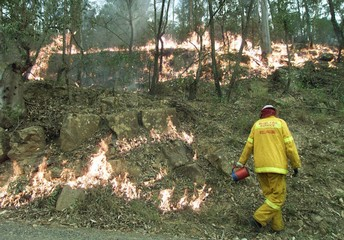 FIRE FIGHTERS DOUSE FLAMES AT A BUSH FIRE AT MANGROVE MOUNTAIN NORTHSYDNEY.