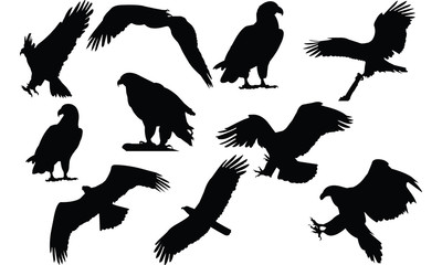 Eagle Silhouette vector illustration